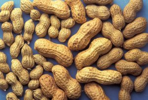 Peanuts-food allergies